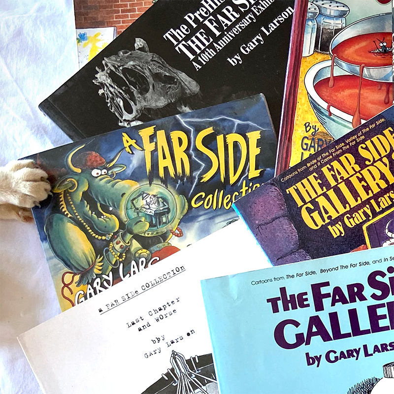 Photo of The Far Side collection books with a cat's paw investigating