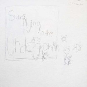 Pencil sketch for PlaySpark_1: Stars flying in the undergrowth