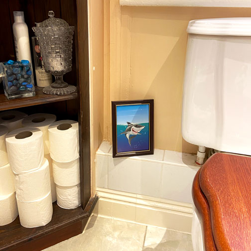 Shark Fin Fun illustration framed within the setting of a bathroom, created by Jeff West